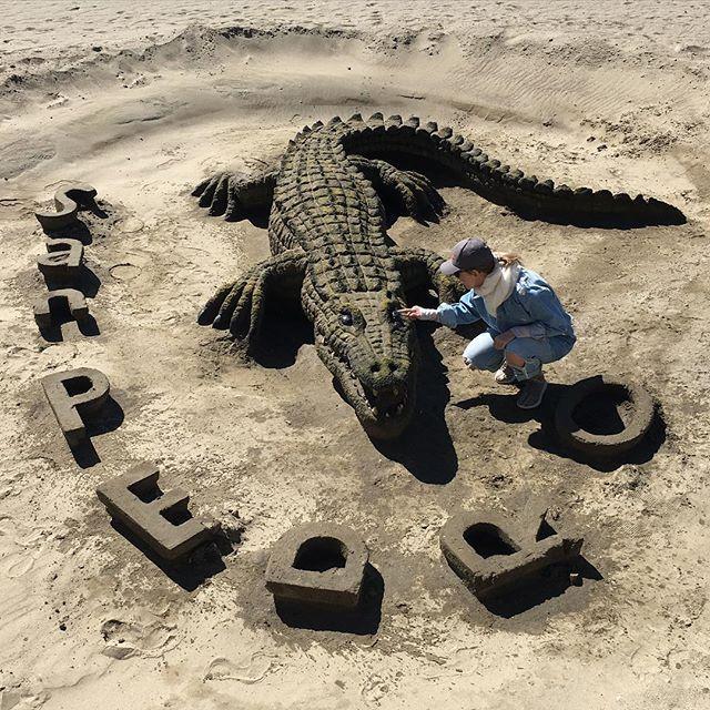 Собчак предложила сделать сумку из этого крокодила