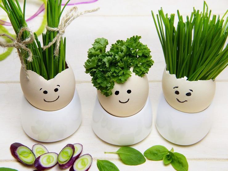 зелень сложна для переваривания детским организмом