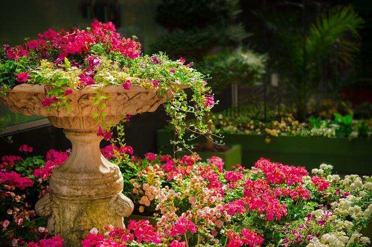 съемка в ботаническом саду - отличная идея