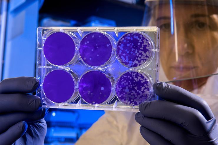 Коронавирус не вечен: 5 пандемий, с которыми справилось человечество