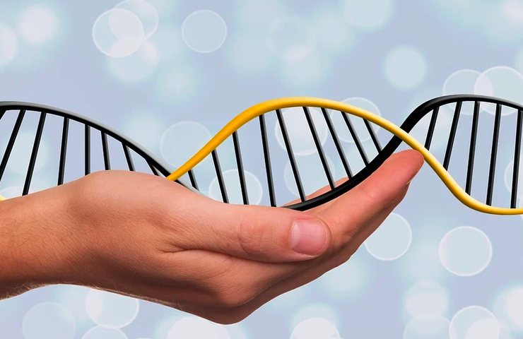 Генетический паспорт: зачем он нужен и что можно узнать из результатов тестирования