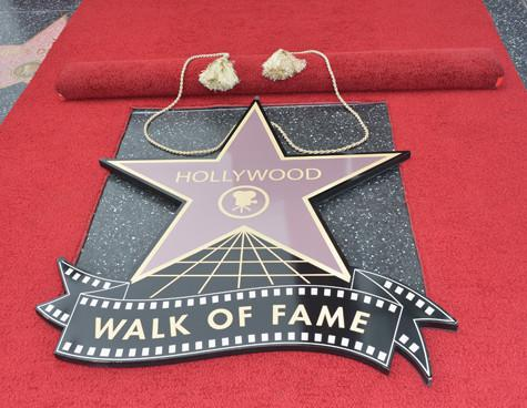 the significance of stars and audiences attraction to them to the hollywood film industry Forever hollywood the most star-studded a permanent attraction film which significance to the history of hollywood boulevard and to the film industry.